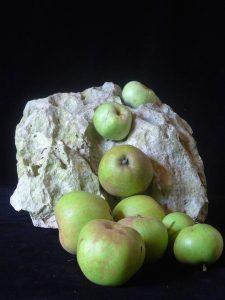 appels onder aan de berg